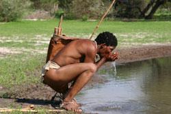 Bushmen_drinkingwater_pan
